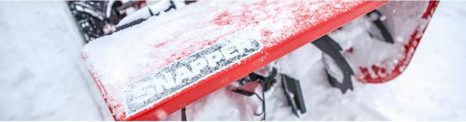 Sniego Pūtikai