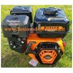 Benzininis variklis ASTOR BS220X