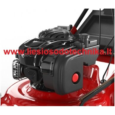 Benzininė vejapjovė RIDER WYS-18 6