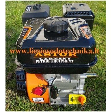 Benzininis variklis ASTOR BS220X 3